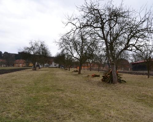 Pozemek 5600 m2, Šebetov